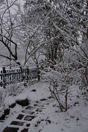 201231大晦日雪 (6)