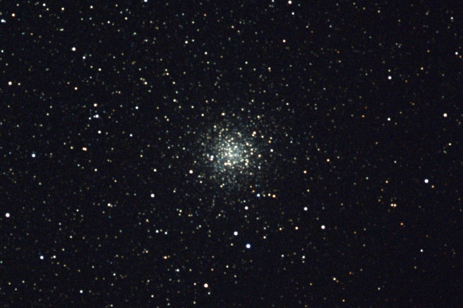 20210420-M9-16c.jpg
