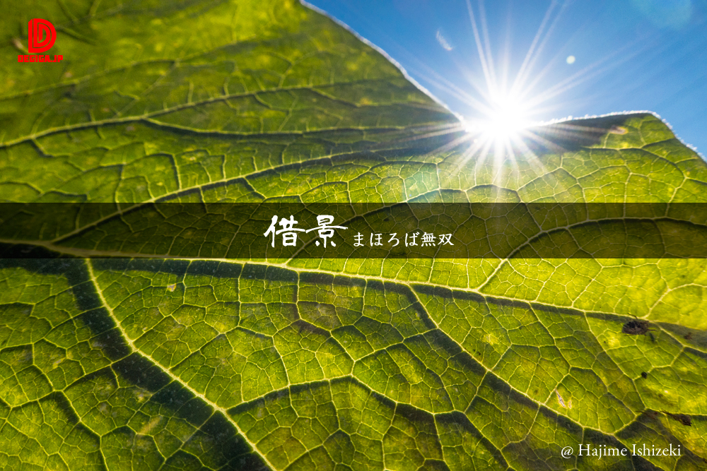新作『借景・まほろば無双』より抜粋
