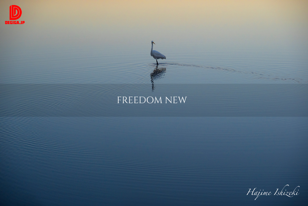 freedom予告1-白鷺