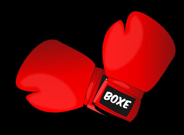 ボクシンググローブ_フリー素材