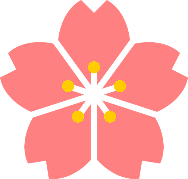 cherry-blossom-1295009_640.png