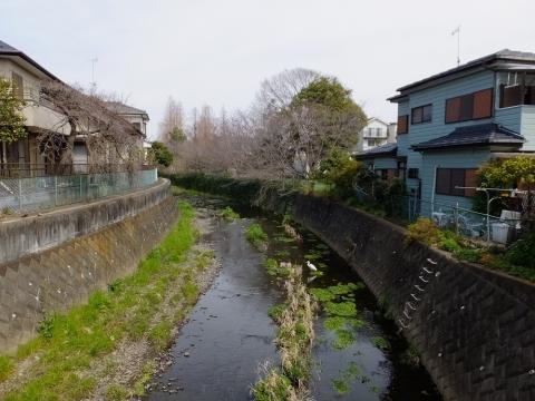 鳩川・上溝川辺公園