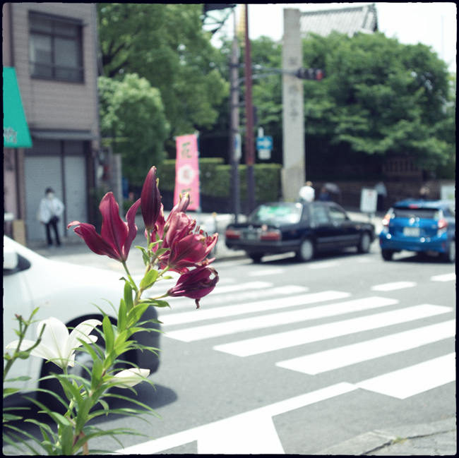 20210607_Osaka_090