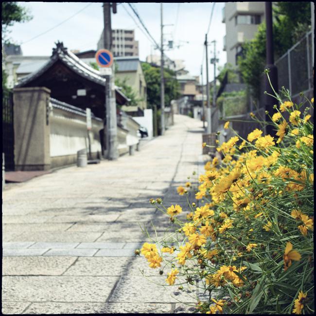20210607_Osaka_130