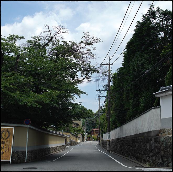 東福寺行き_037