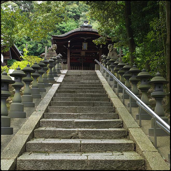 東福寺行き_062