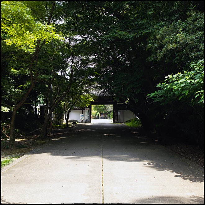 20210713_Kyoto_085