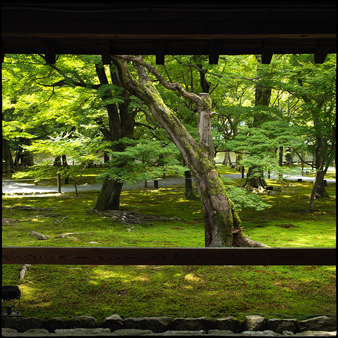 20210713_Kyoto_093