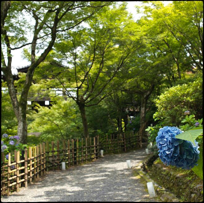 20210713_Kyoto_108