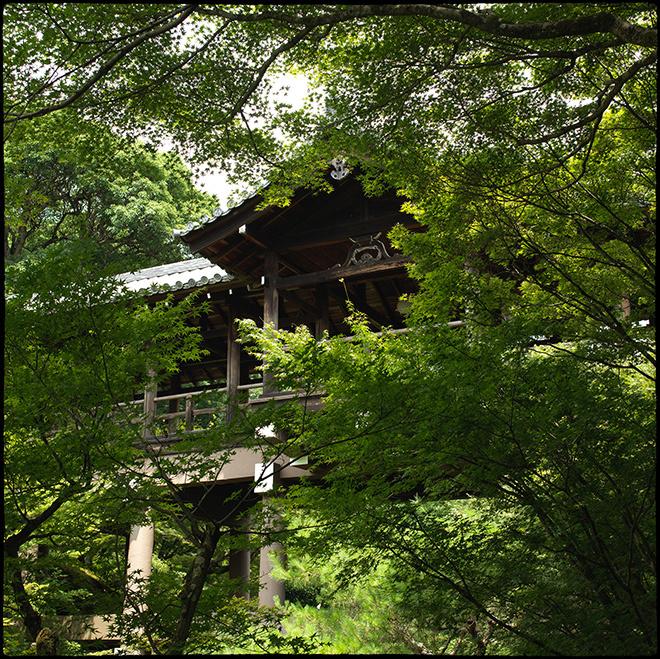 20210713_Kyoto_109