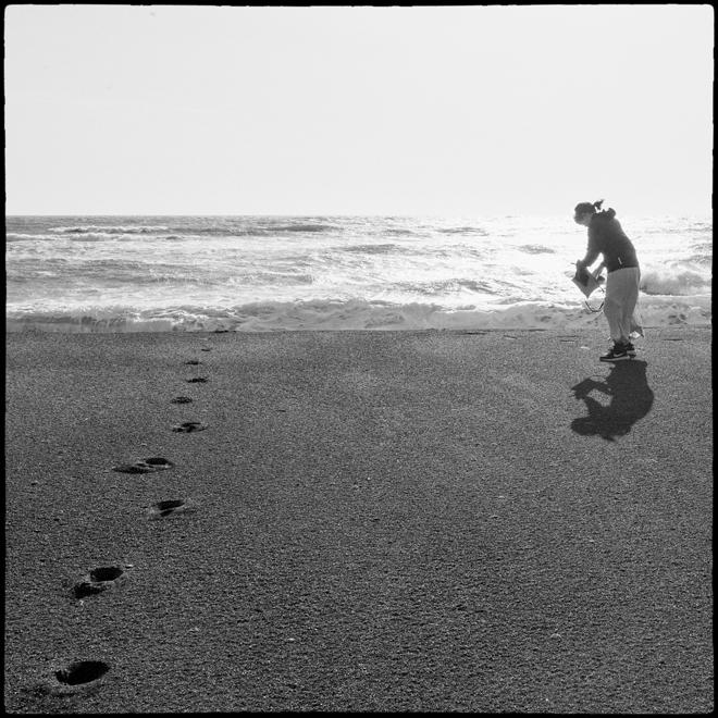 砂浜に戯れる