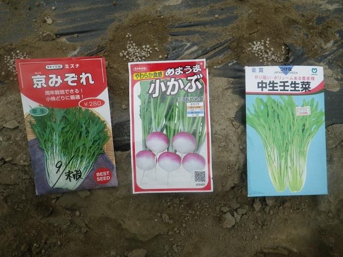 小物野菜5_20_10_03