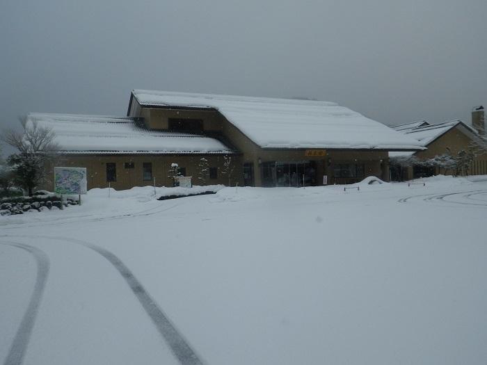 雪2_21_01_19