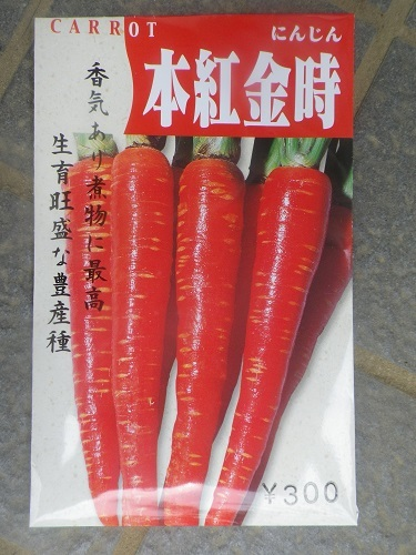 ニンジン【本紅金時】表_青新