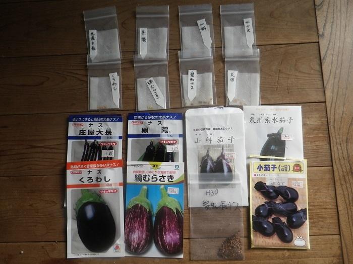 夏野菜2_21_02_11