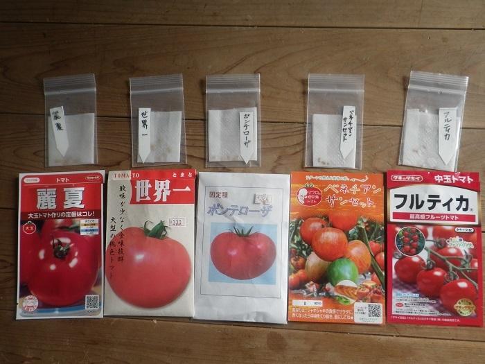 夏野菜3_21_02_11