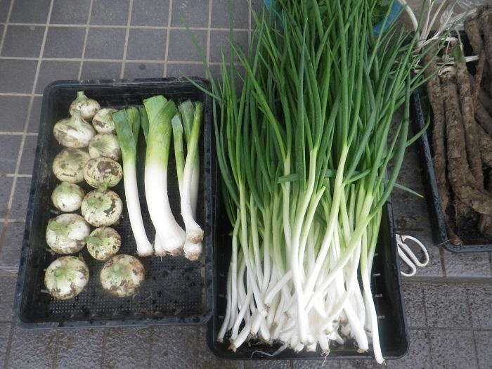 収穫2_21_03_28