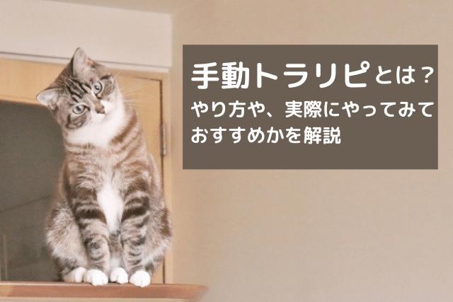 手動トラリピ-min