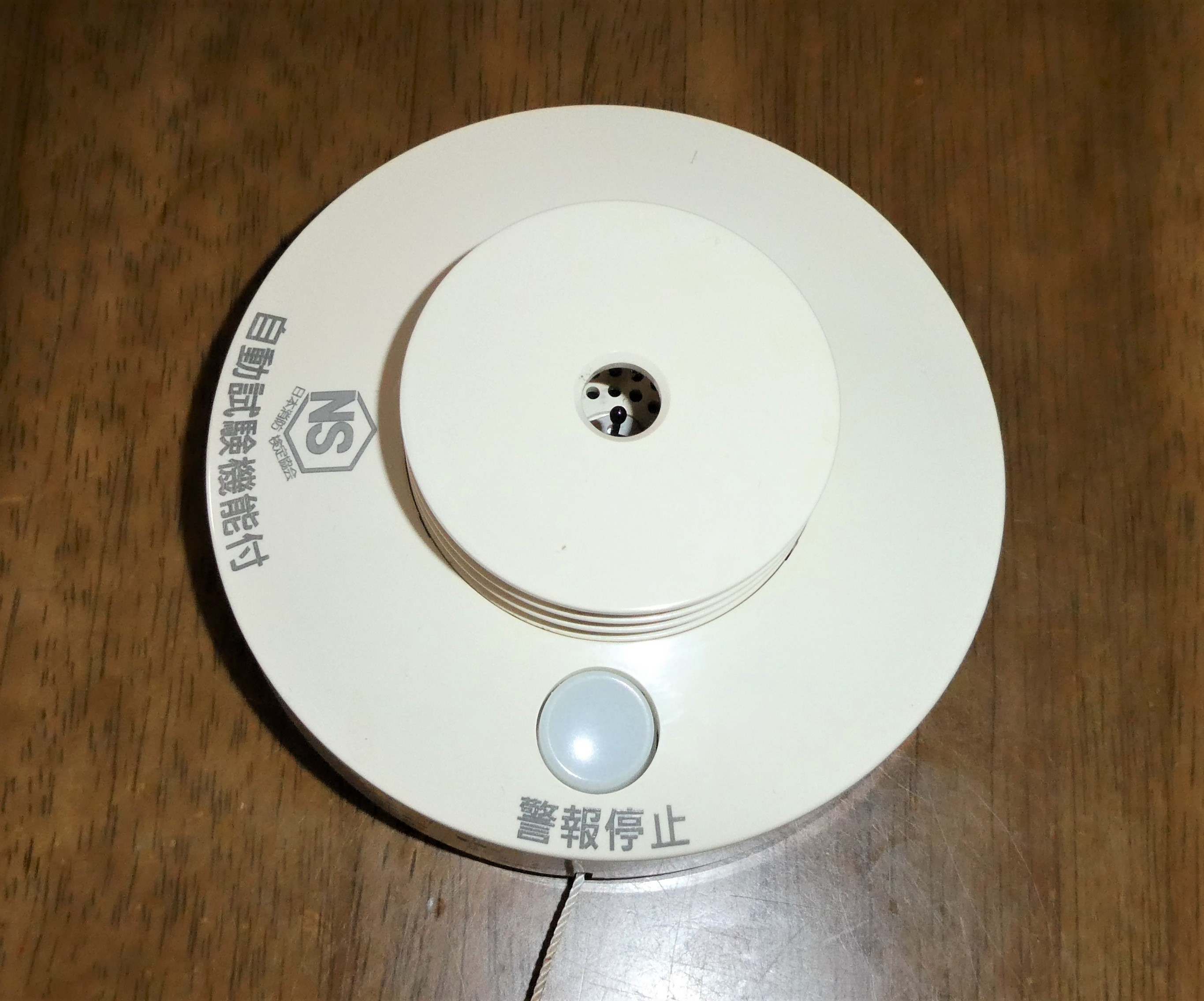 P1000541 (2)