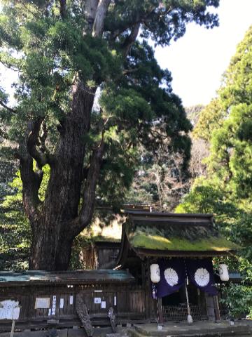若狭姫神社 3