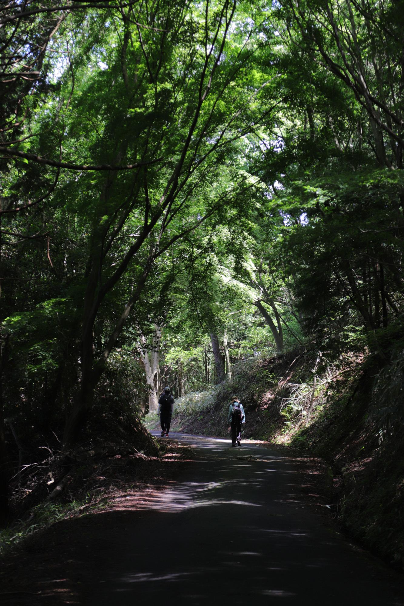 konzeyama-4.jpg
