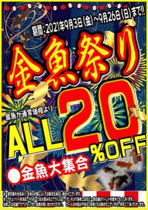 金魚祭2021秋