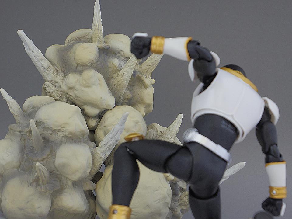 1069_SHF 真骨彫製法 グローイング