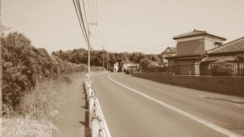 photo46.jpg