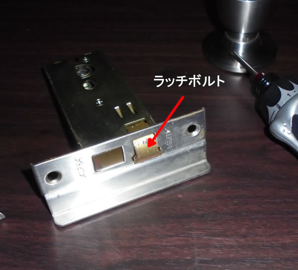 DSC03387.jpg