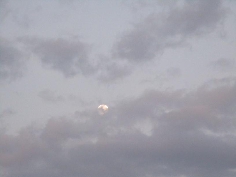 luna_mattina210824_0622