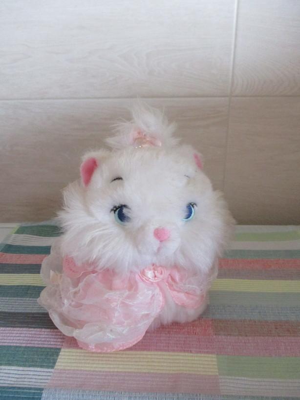 oshare_cat_Marie5_210219