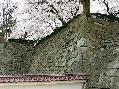 福井城天守台石垣2012年4月