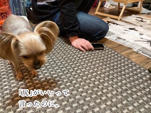 fc2blog_202101131623194fa.jpg
