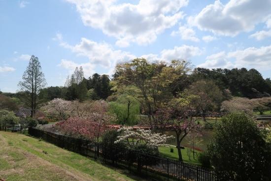 浜松市動物園からフラワーパーク