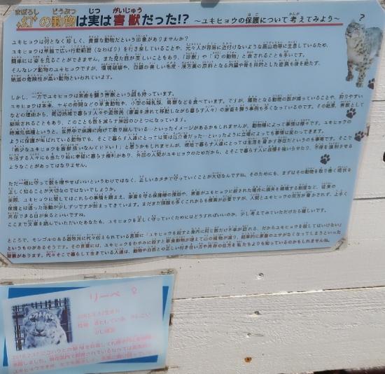 浜松市動物園 ユキヒョウ