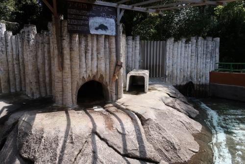 浜松市動物園 ビーバー 居ないけど