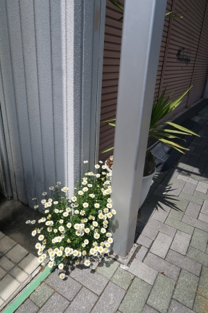 浜松市天竜区