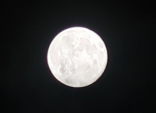 20210427~28ピンクムーン
