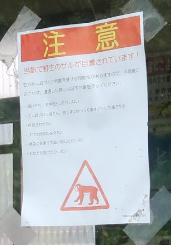 二俣本町駅 サルに注意