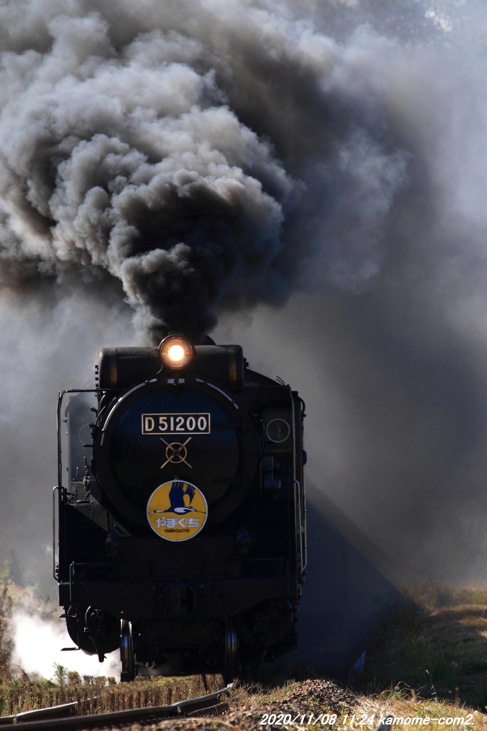 D51-200牽引:SLやまぐち号@山口線・大山第一踏切