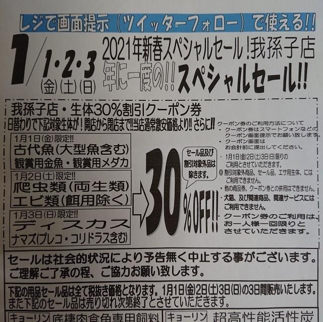 2012301.jpg
