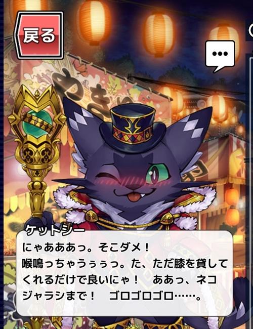 放サモ奇術師アイテムコンプ (5)
