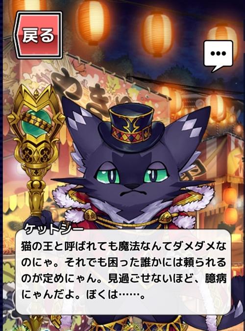 放サモ奇術師アイテムコンプ (6)