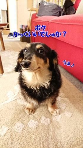 DSC_5851.jpg