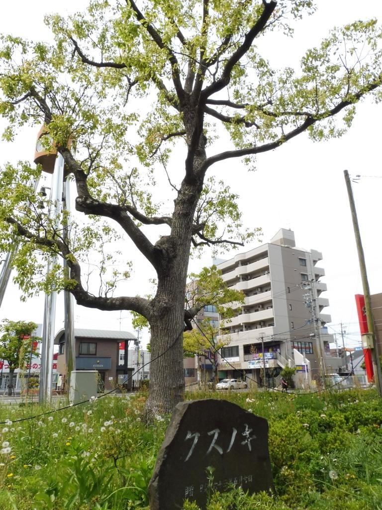 aoyama_meitetsu2.jpg