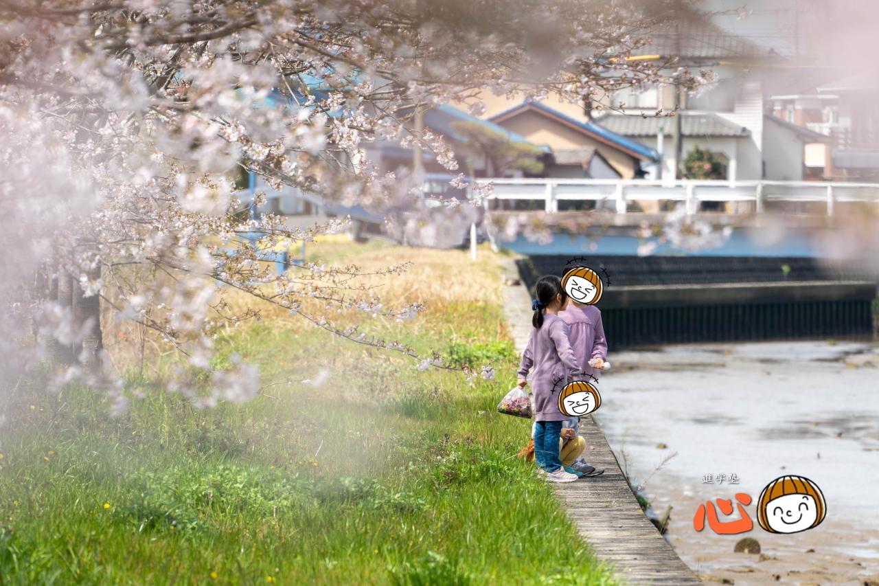 0329桜⑦