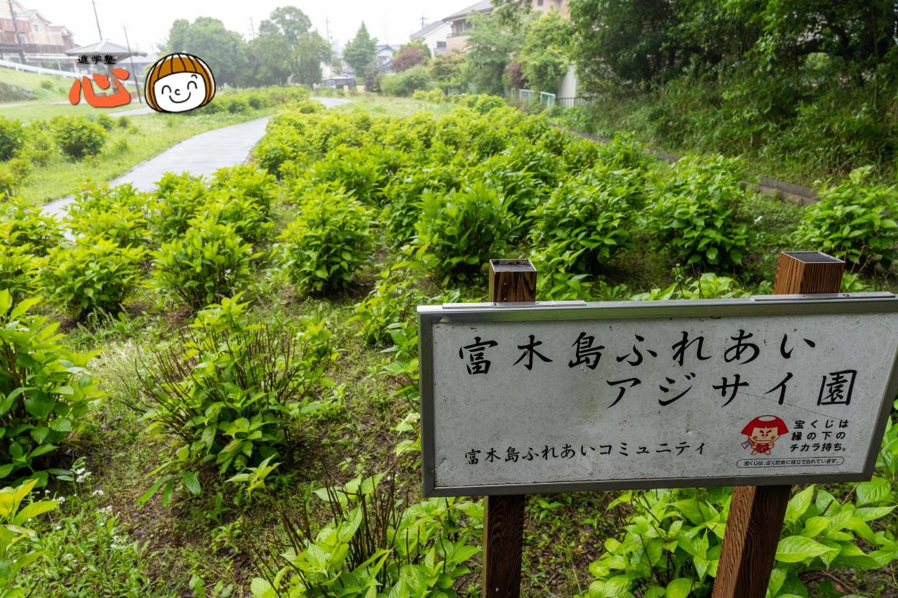 0517上野台公園