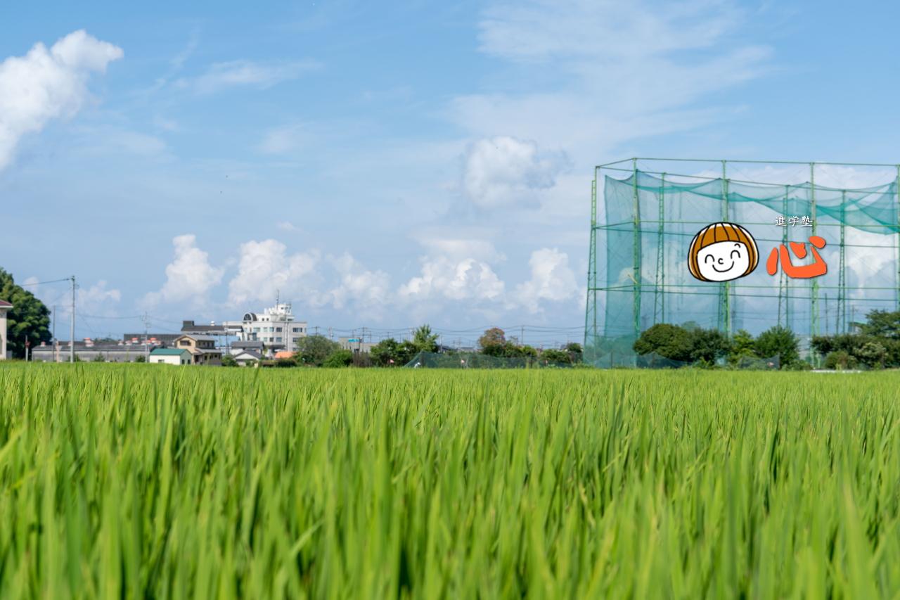 0802タケヤゴルフ