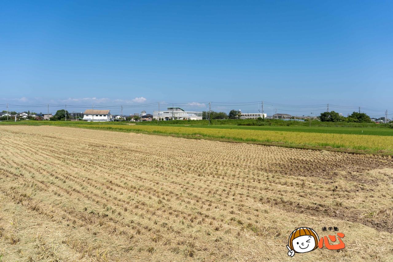 0830稲刈り終了